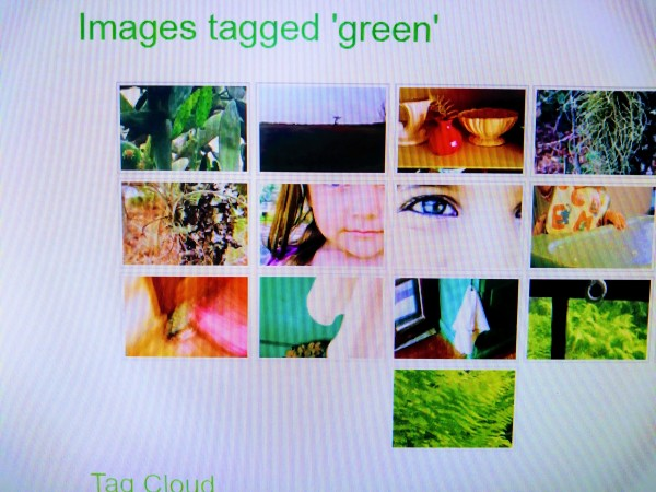 Images Tagged 'Green' I