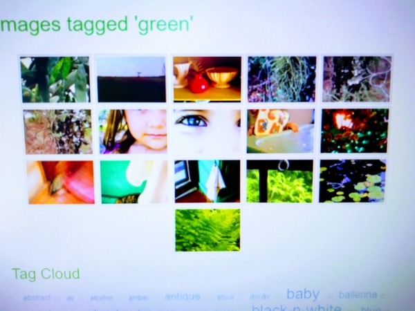 Images Tagged 'Green' II