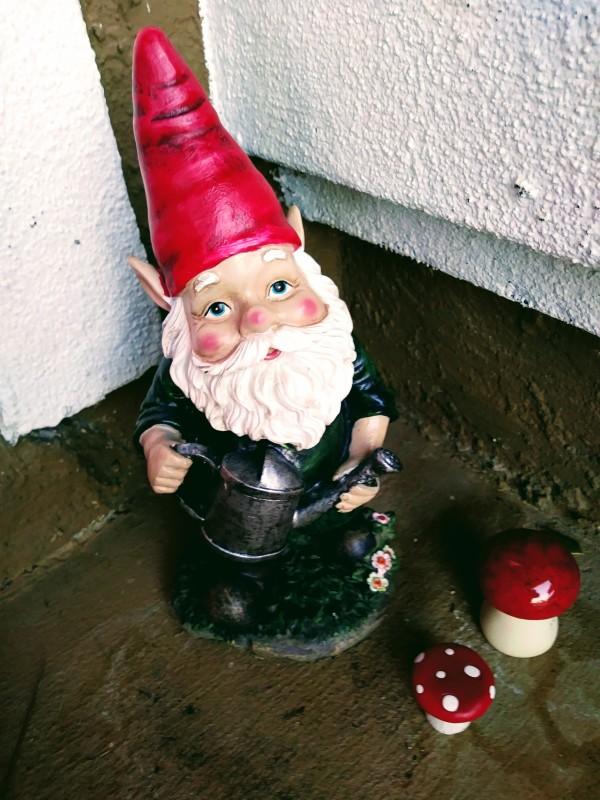 garden gnome mushroom
