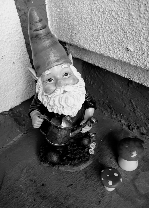 garden gnome black white