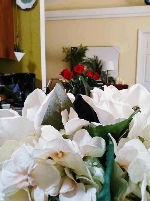 Roses Beyond