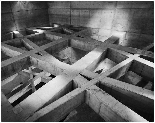 concrete form [b&w]