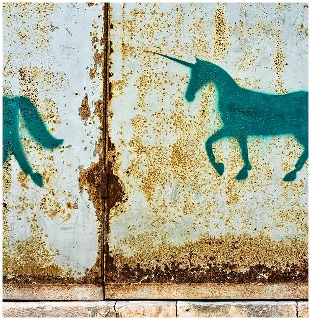 unicorn cycle