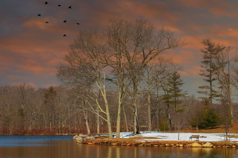 Brockton. Massachusetts.