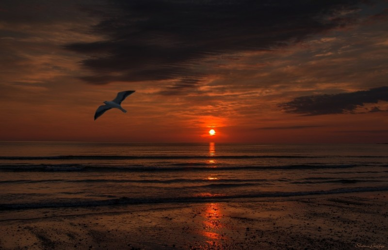 Sunrise. Nantasket Beach Hull  Massachusetts.