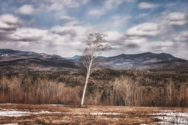 White Mountains. New Hampshire . (2)