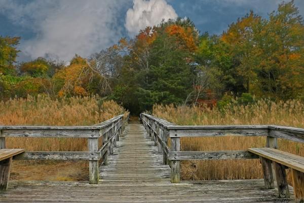 Bridge.  Scituate Massachusetts.