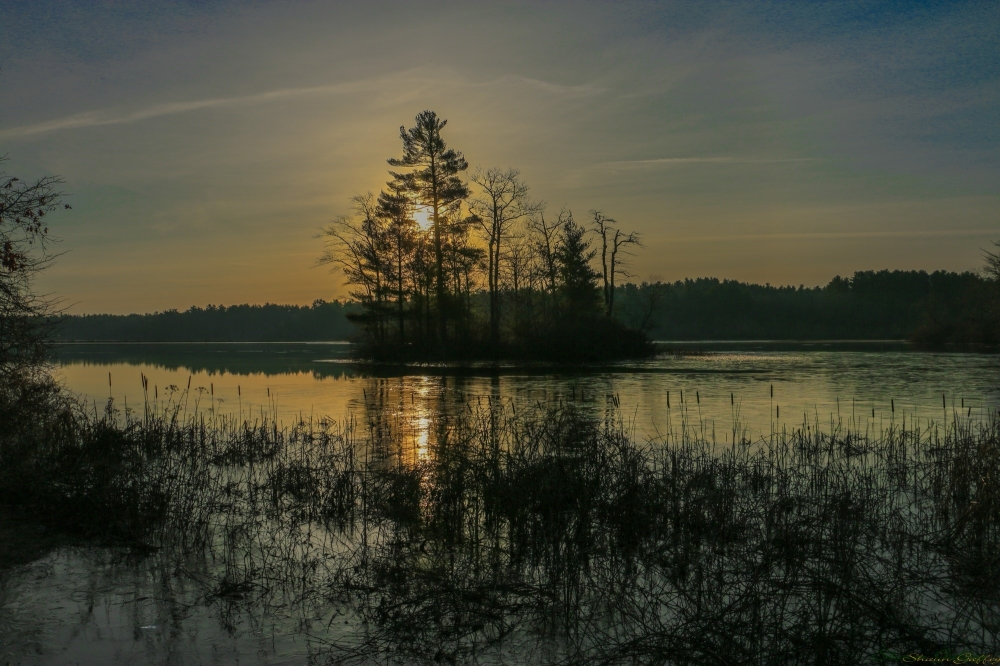 Dawn. Lakeville Massachusetts.