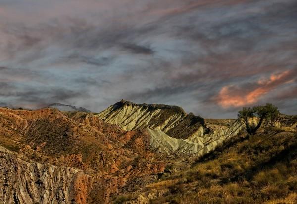 Siera Nevada. Spain.