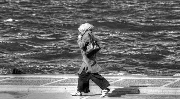 A Walk In The Wind.
