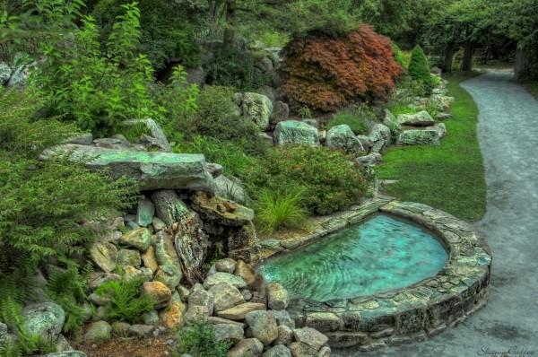 Garden. Whitman, Massachusetts.