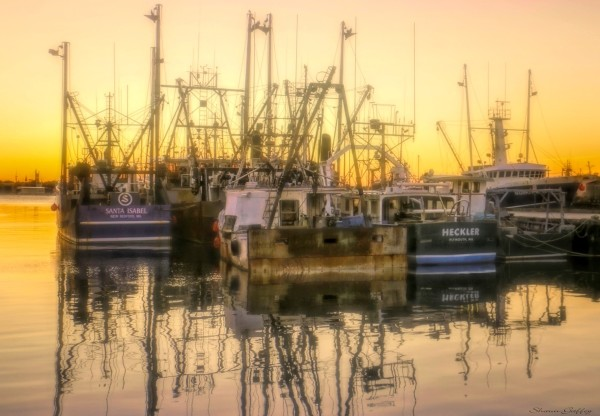 Dawn. Fish Dock. Port of New Bedford Massachusetts