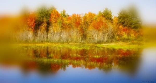 Thornton. New Hampshire.