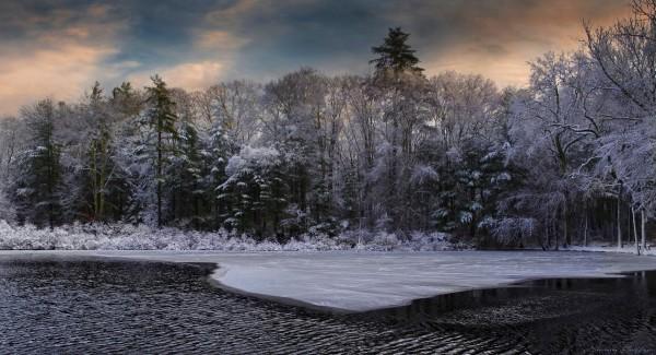 Norris Reservation. Massachusetts.