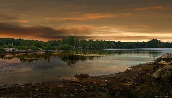 Brockton Massachusetts.