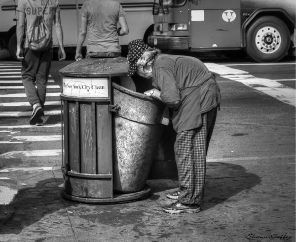 A Sad Sight In Manhattan.