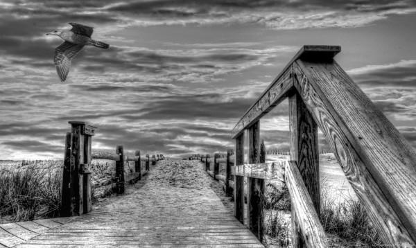 Cape Cod. Massachusetts.
