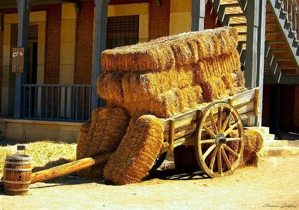 Hay Cart. Film Set Spain.