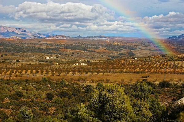 Albox. Spain.