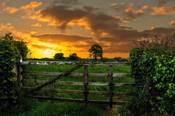 Dunkeswell. East Devon . UK.