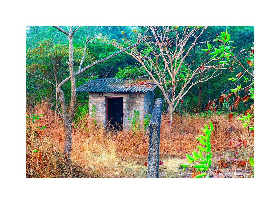 a shed in the wilderness