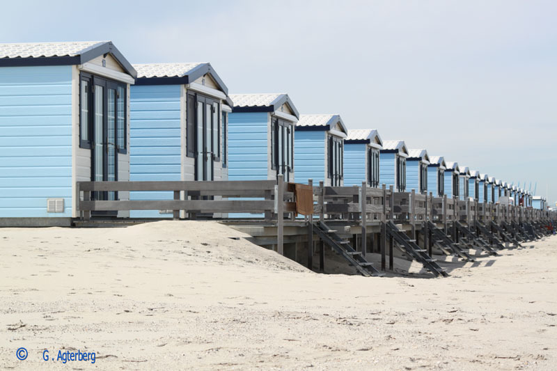 Beach houses Hoek van Holland .