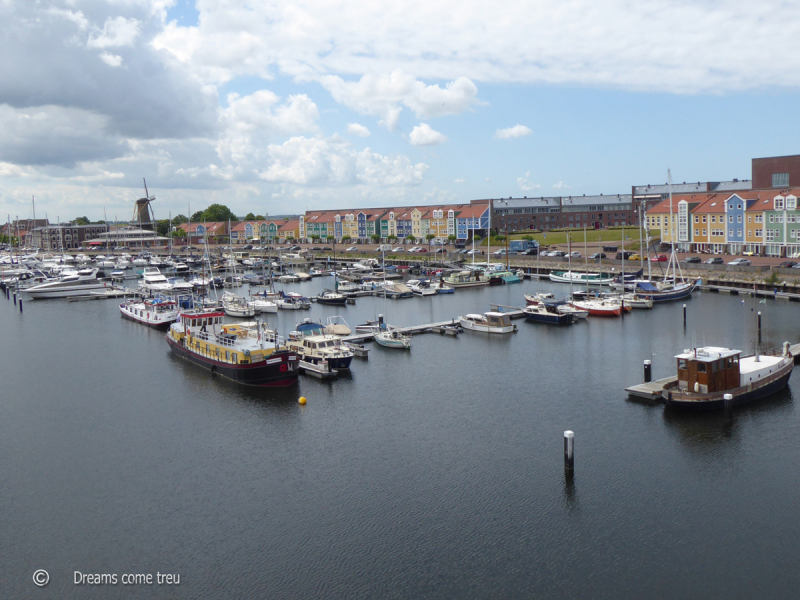 Harbour viewed from above
