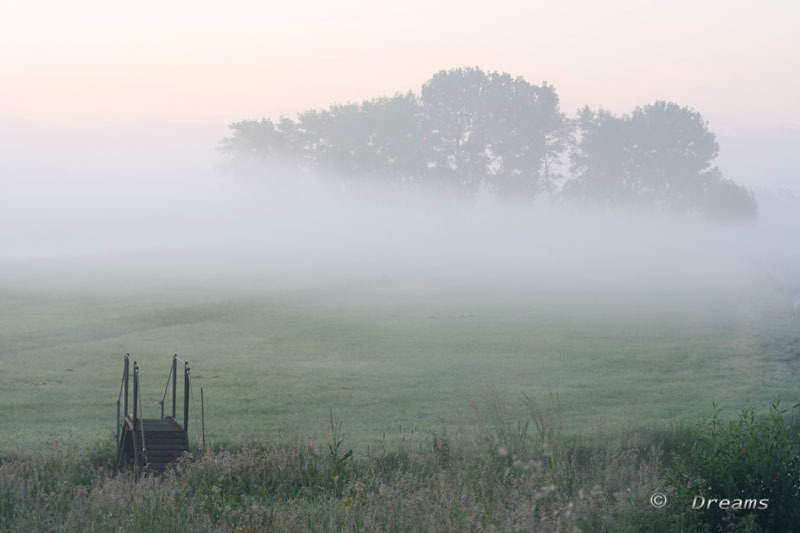 It was foggy yesterday morning .