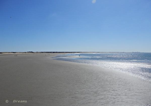 The beach Yesterday