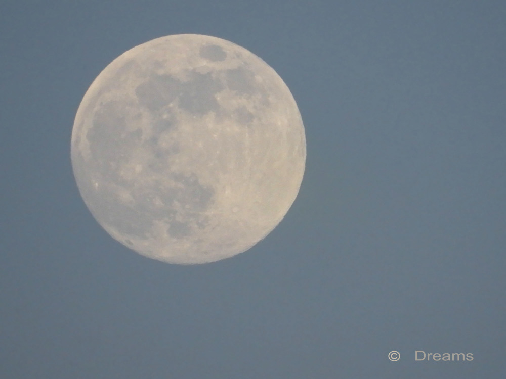 Today is the full moon .