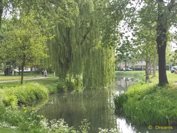My beautiful hometown 3