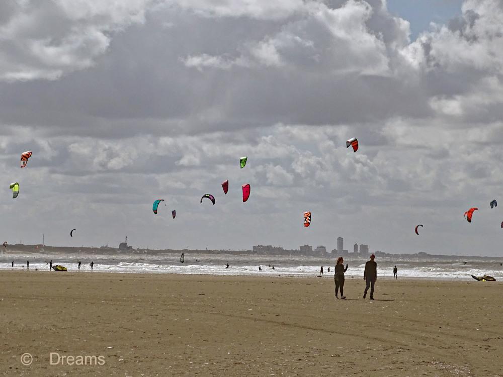 Windsurfing .