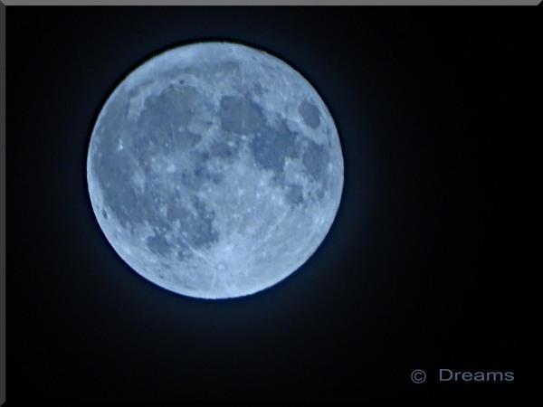 Bleu full moon at Halloween .