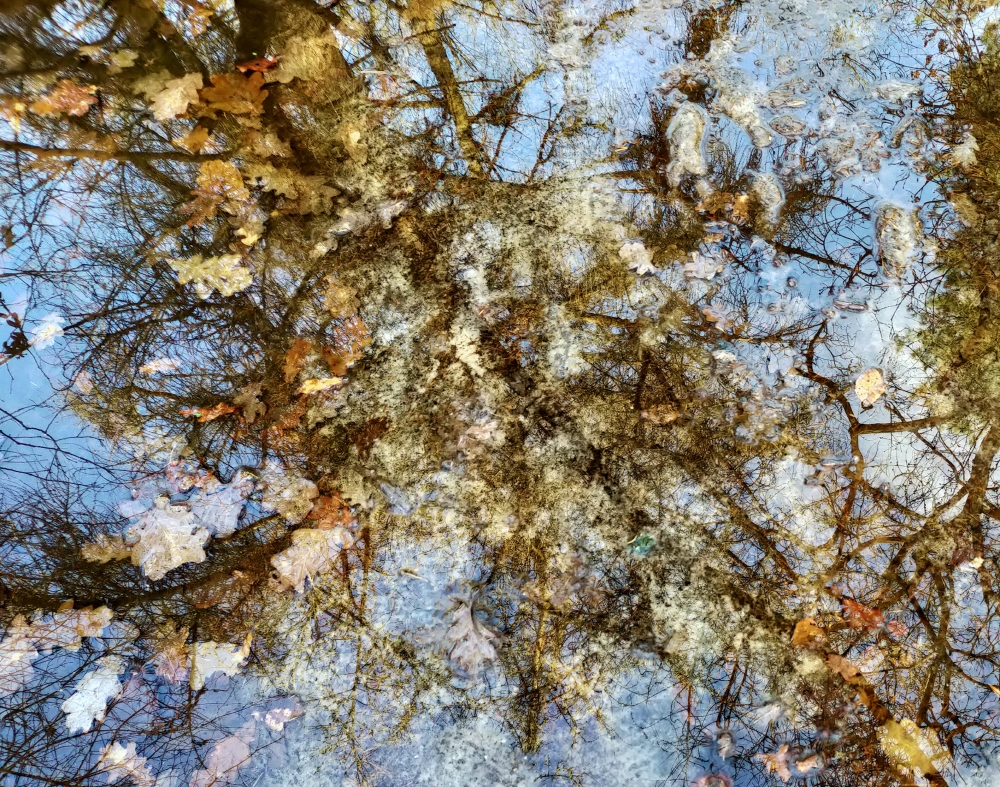 Reflection and art from the nature