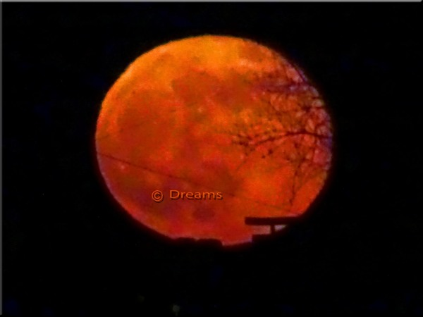 The rise of the pink super moon. April 27 at 21.50