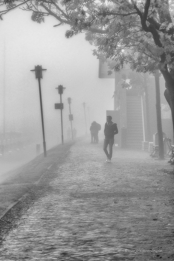 Walking  in the fog