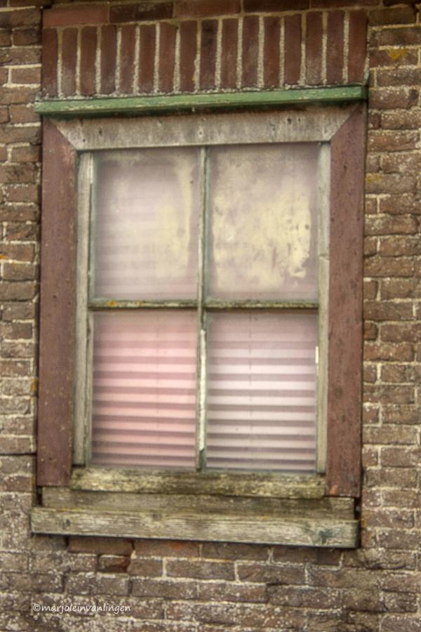 WINDOW(S 10)