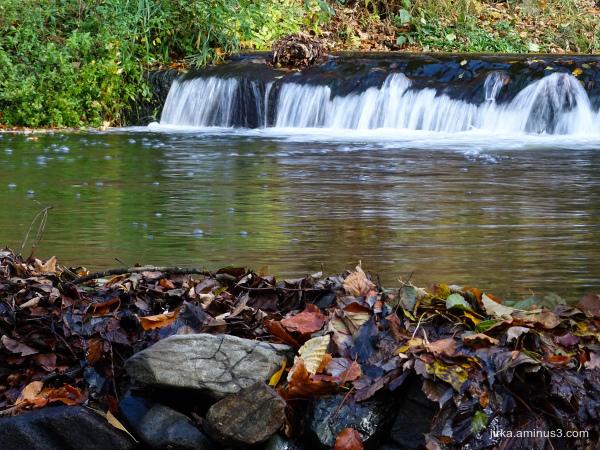 Sluice and dam