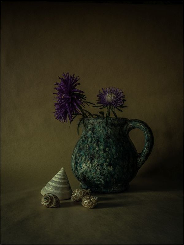 STILL.LIFE.WITH.ASTERS.AND.SHELLS