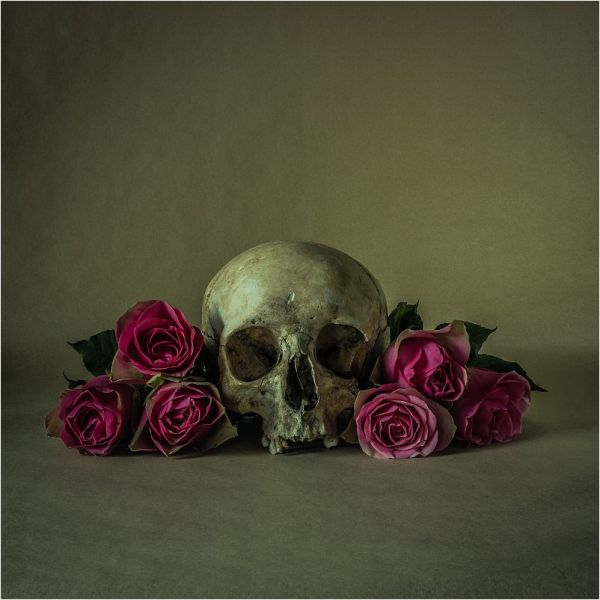 SKULL.WITH.ROSES