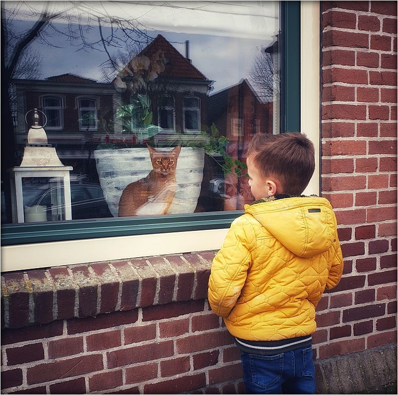 KID.AND.CAT