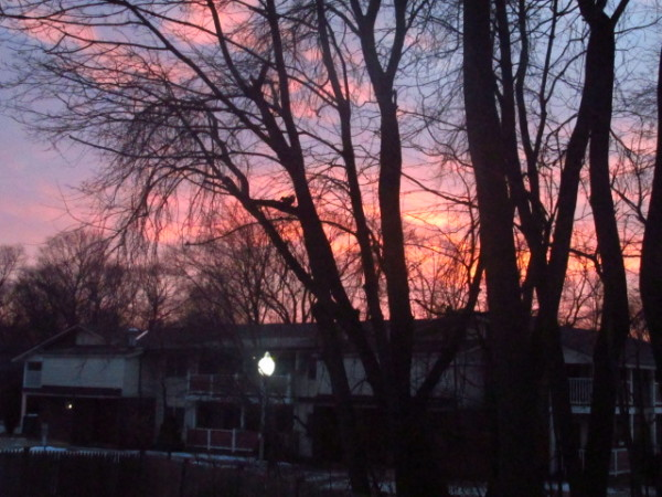 pretty sunrise