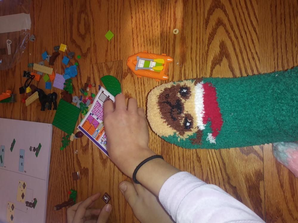 I Got Pug Socks for Christmas