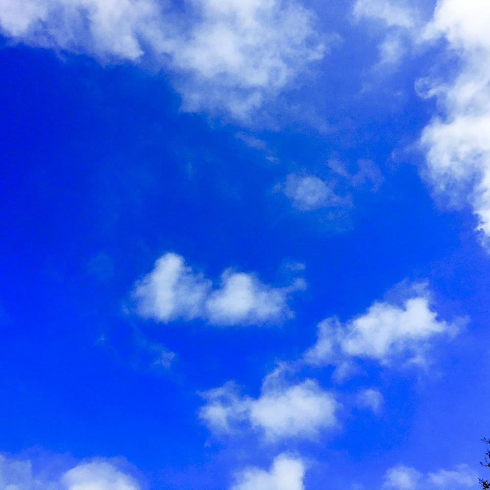 sky 4.18.20