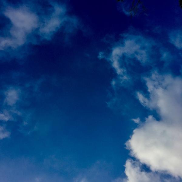 sky 5.29.20