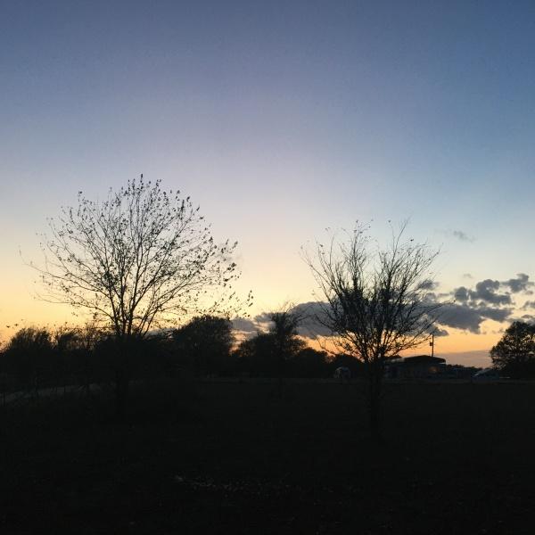 Sunset 210407
