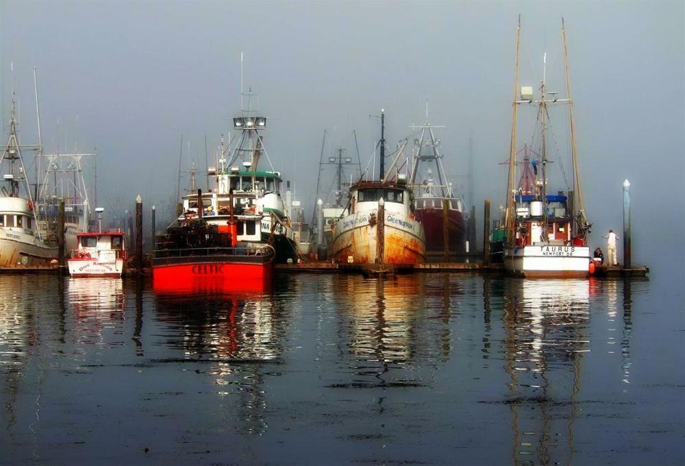 Westport docks