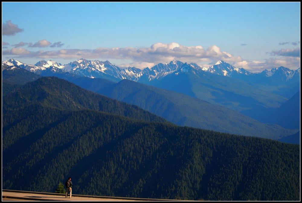Hurricane Ridge, early morning
