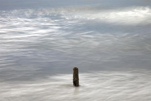 Pacific ocean & piling