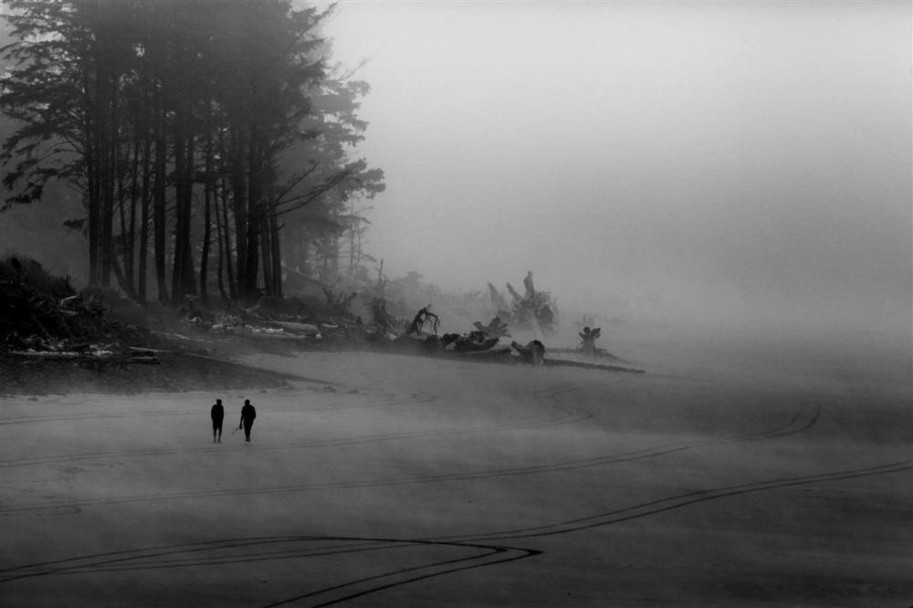 A walk on a foggy beach